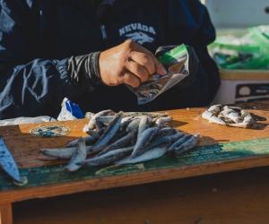 Antioch-Fishing-Derby-10