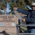 Salmon Fishing at the Antioch Marina
