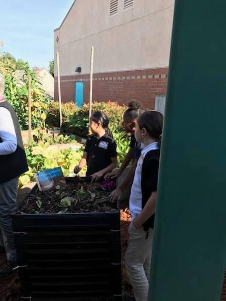 Jack London Elementary welcome Terri Tchorzynski