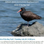 Birds For The Bay Trail: A Presentation From Birder Bob Lewis