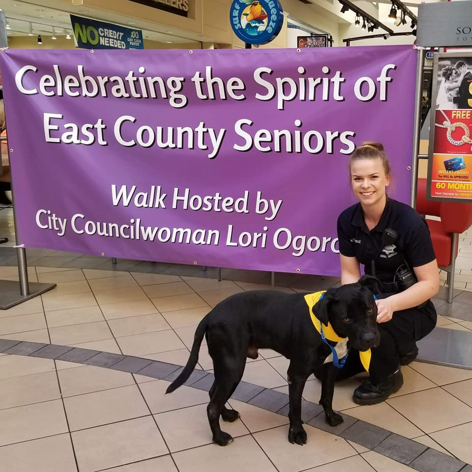 Adopt A Senior Pet Month at Somersville Towne Center