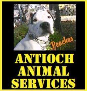Antioch Animal Shelter