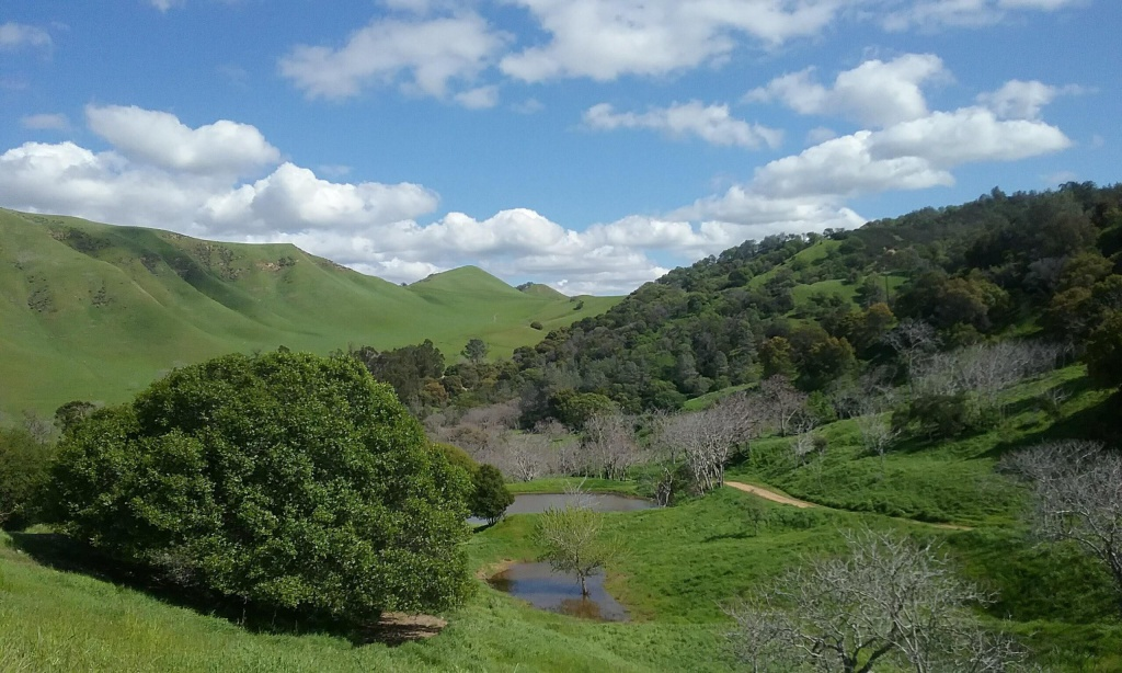Black Diamond Mines View - Antioch