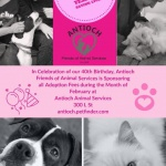 Antioch Animal Services - Antioch on the move