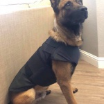 Fundraiser to Support K9 Unit
