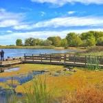 Contra Loma Regional Park