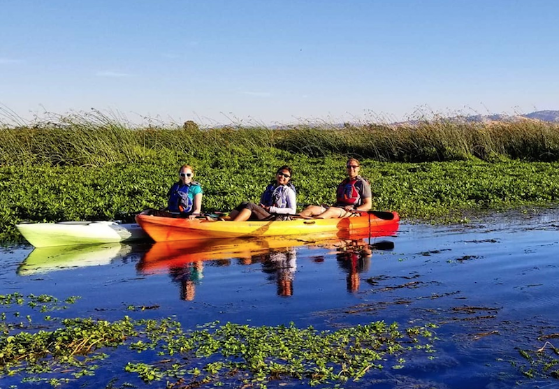 Dow Wetland with Delta Kayak Adventures