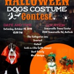 Pet Costume Contest - Hot Rods 4 Paws