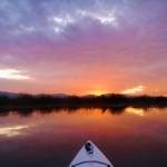 Weekday Wetlands Paddle